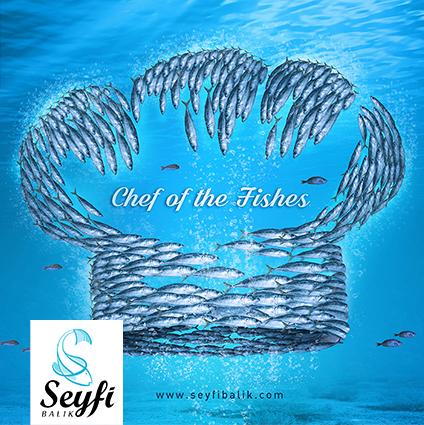 Seyfi Balık Reklam Çalışmaları